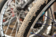 Bike whee Stock Images
