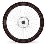 Bike wheel. Illustration on white background. EPS 8 Stock Photography