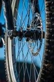 Bike Wheel Royalty Free Stock Image