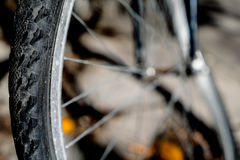 Bike wheel and spokes. Stock Images