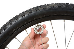 Bike wheel truing and maintenance Stock Images
