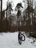 Bike in winter forest Royalty Free Stock Photography