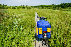 The bike on the wooden path. Touring bike on the wooden bridges built across the swamp Stock Photography