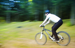 Biker. Mountain Biker riding through the forest in a autumn day Royalty Free Stock Photos