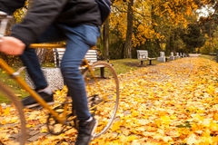 Biker in autumn park Stock Photography