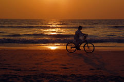 Biker on the Beach at Sunset Stock Photos