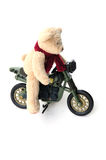 Biker bear Royalty Free Stock Photo