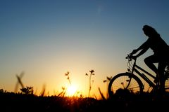 Biker bicycle sunset Stock Images