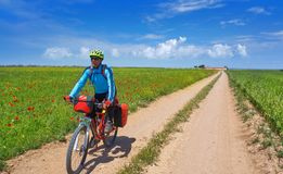 Biker by Camino de Santiago in bicycle royalty free stock image