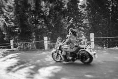 Biker driving his cruiser motorcycle on road in the forest. Man with beard driving his cruiser motorcycle by nice road in the forest. Man is wearing leather Royalty Free Stock Photo