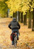 Biker driving at park in Autumn Stock Images