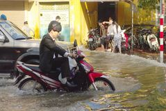 Biker in the flooded city Stock Photos