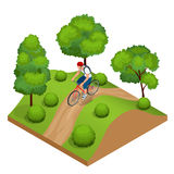 Biker in forest cycling on track from behind. Weekend excursion on their bikes on a summer day.  Flat 3d vector Stock Photos