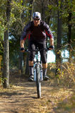 Biker on forest path. Biker in black on forest path Stock Photos