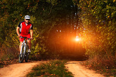 Biker on the forest road riding outdoor Stock Photos