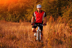 Biker on the forest road riding outdoor Stock Photography