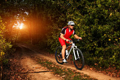Biker on the forest road riding outdoor Royalty Free Stock Photos