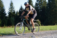 Biker on forest trail Royalty Free Stock Photos