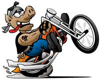 Biker hog popping a wheelie on a motorcycle cartoon vector illustration. Funny cartoon biker pig wearing a bandanna, with a skull tattoo, riding a chopper vector illustration