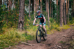 Biker in the mountains by downhill Stock Image