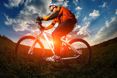 Biker in orange jersey riding on green summer field Stock Images