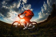 Biker in orange jersey riding on green summer field Stock Photography