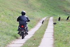 Biker rides a motorcycle on the road of cement slabs dispersing crows. Cruise on an iron horse in nature. Lifestyle of the pilgrim stock image