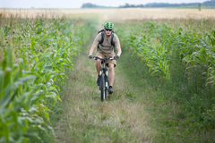 Biker riding at cornfield Royalty Free Stock Photo