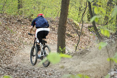 Biker riding downhill Royalty Free Stock Images