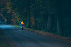 Biker with safety vest on road in autumn forest at dusk. Stock Photo