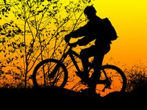 Biker silhouette. Mountain biker silhouette with orange sunrise stock images