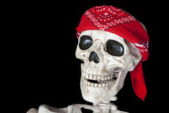 Biker Skeleton Stock Image