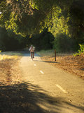 Biker on trail. Biker with white shirt, biking on trail, in a wooden area, long shadows afternoon lighting Royalty Free Stock Image
