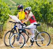 Bikers. Holding a map in vineyard, Czech Republic Royalty Free Stock Photos