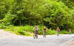 Bikers. Group of cyclists on road in forest Royalty Free Stock Images