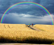 Bikers crossing wheat fiels Royalty Free Stock Photos