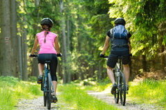 Bikers in forest cycling on track Stock Photos