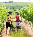 Bikers In Vineyard Royalty Free Stock Image