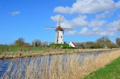 Bikers passing by an old windmill in Damme. Near Bruges,  Flanders, Belgium Stock Image