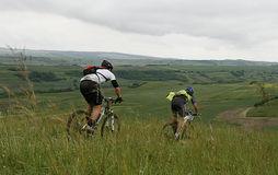 Bikers in race. MEDIAS, ROMANIA, -JUNE 11: Two unidentified mountainbikers during competition on June 11, 2011 in Medieval Mountainbike Marathon in Medias Royalty Free Stock Photo