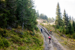 Bikers travel in difficult conditions in autumn. Forest Royalty Free Stock Photography
