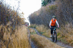 Bikers travel in difficult conditions in autumn. Forest Stock Images