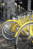 Row of yellow bicycles Royalty Free Stock Photos