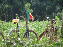 Bikes in Africa Royalty Free Stock Photography