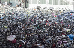 Bikes of Amsterdam. Hundreds of bikes parked in Amsterdam Royalty Free Stock Photos