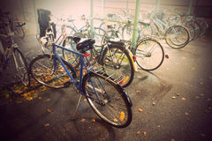 Bikes in autumn Royalty Free Stock Photography