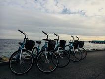 Bikes in Copenhagen royalty free stock photo
