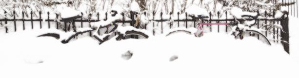 Bikes covered with fresh snow in Montreal, Canada Royalty Free Stock Photos