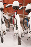 Bikes covered with snow. In winter Royalty Free Stock Photo