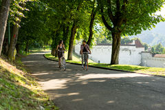Bikes on the driveway with trees Stock Photos